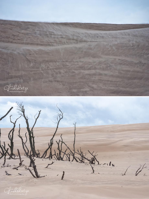 leba dunes sanduenen polen glückskatze